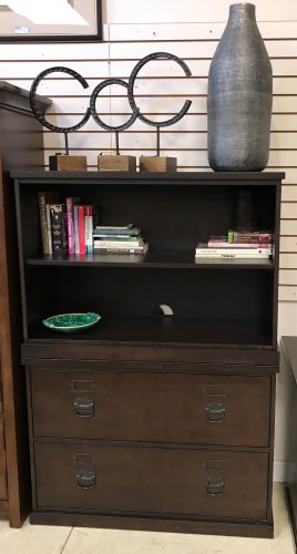 Pottery Barn Contemporary Lateral File Bookcase Cabinet